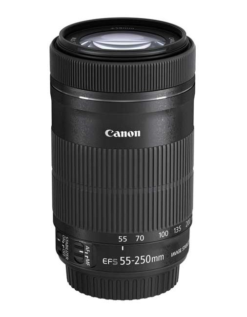 Foto & Cam Canon EF-S 55-250mm 1:4-5,6 IS STM - Näher ran an die Action - News, Bild 1