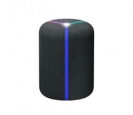 sony-hifi-neuer-kabelloser-lautsprecher-von-sony-spotify-bluetooth-und-alexa-15685.jpg