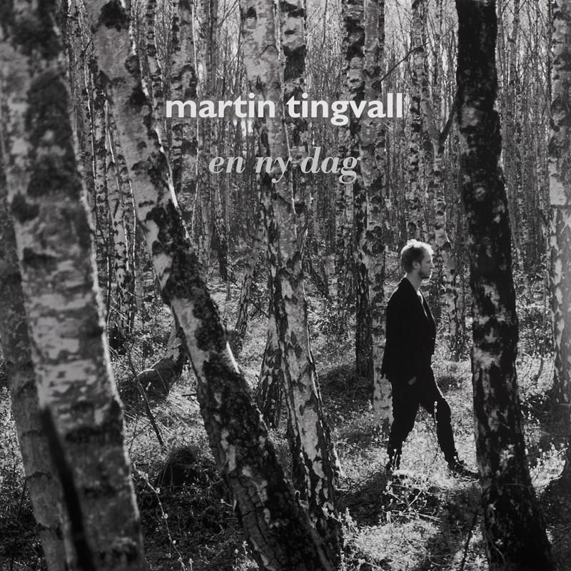 Schallplatte Martin Tingvall – En Ny Dag (Skip) im Test, Bild 1