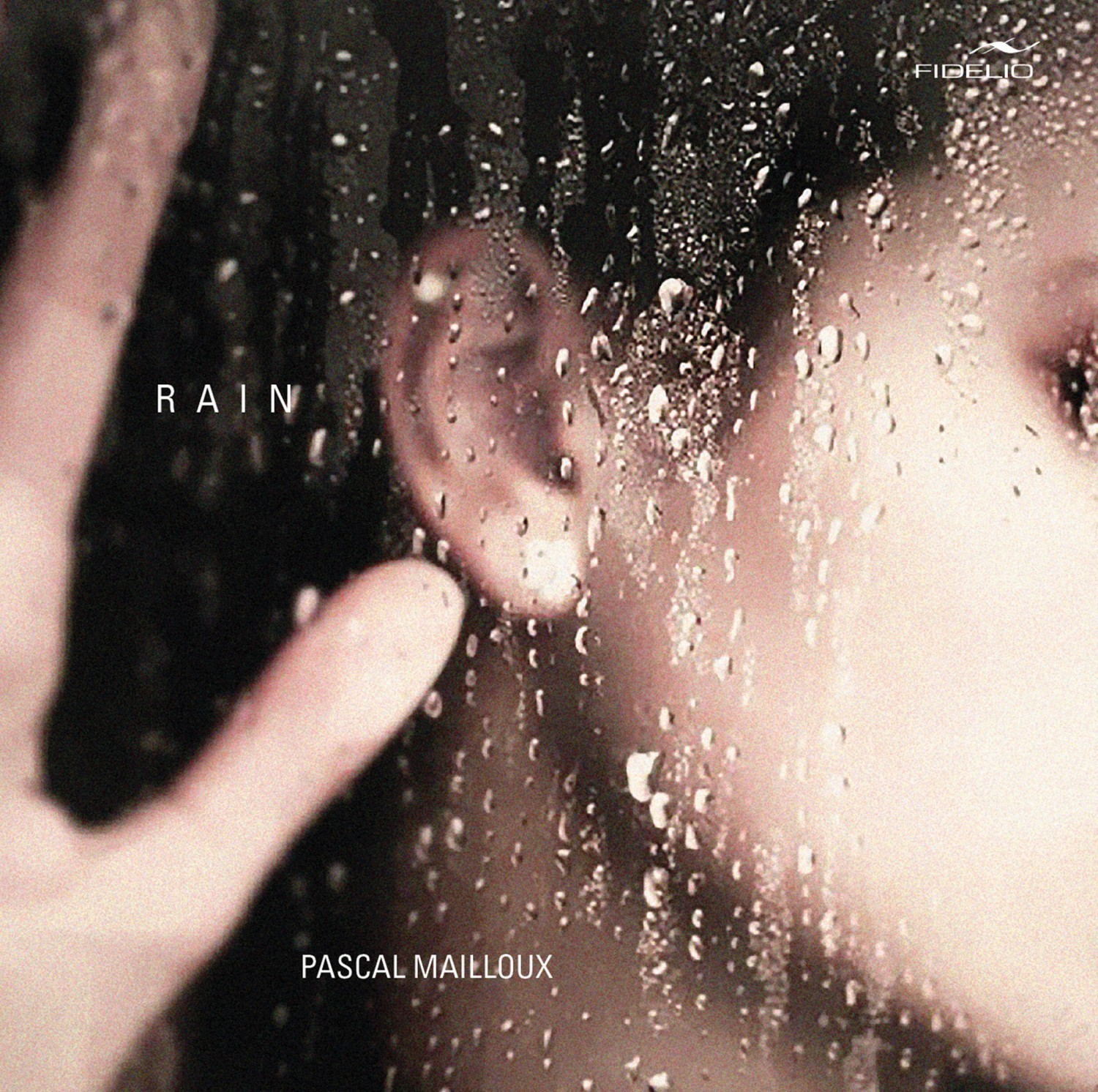 Download Pascal Mailloux - Rain (Fidelio Records) im Test, Bild 1