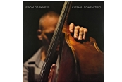 Schallplatte Avishai Cohen Trio - From Darkness (Razdaz Records) im Test, Bild 1