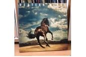 Schallplatte Bruce Springsteen – Western Stars (Columbia) im Test, Bild 1