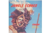 Schallplatte Chaino and His African Percussion Safari - Jungle Echoes (Black Sweat Records / Moi J'Connais) im Test, Bild 1