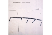 Schallplatte Dominik Wania – Lonely Shadows (ECM) im Test, Bild 1