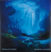 Schallplatte Donald Fagen – Sunken Condos (Reprise) im Test, Bild 1