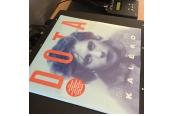 Schallplatte Dota Kehr – (Mascha) Kaléko (Kleingeldprinzessin Records) im Test, Bild 1