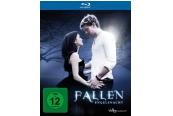 Blu-ray Film Fallen – Engelsnacht (Universum) im Test, Bild 1