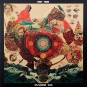 Schallplatte Fleet Foxes – Helplessness Blues (Bella Union) im Test, Bild 1