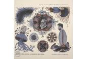 Schallplatte Friedrich Liechtenstein Trio - Schönes Boot aus Klang (Berliner Meisterschallplatten BMS) im Test, Bild 1