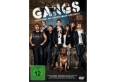 DVD Film Gangs (Walt Disney) im Test, Bild 1