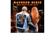Schallplatte Hayseed Dixie - Hair Down to My Grass (Hayseed Dixie Records) im Test, Bild 1