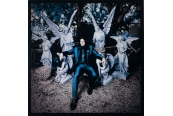 Schallplatte Jack White - Lazaretto (Third Man Records) im Test, Bild 1