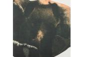 Schallplatte Jean-Marc Foltz - Viracochas (Vision Fugitive) im Test, Bild 1