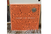 Schallplatte Jimmy Eat World – Surviving (Exotic Location Recordings / RCA) im Test, Bild 1