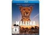 Blu-ray Film Maleika (Eurovideo) im Test, Bild 1