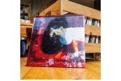 Schallplatte Mogwai – As The Love Continues (Rock Action) im Test, Bild 1