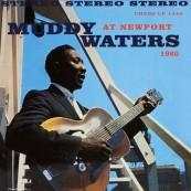 Schallplatte Muddy Waters – At Newport 1960 (Chess) im Test, Bild 1