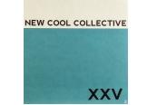 Schallplatte New Cool Collective - XXV (Dox Records / Music On Vinyl) im Test, Bild 1