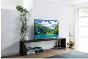 Fernseher Panasonic TX-55FXW724 im Test, Bild 1