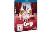Blu-ray Film Royal Corgi – Der Liebling der Queen (Universum Film) im Test, Bild 1