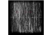 Schallplatte Taumel – There Is No Time To Run Away From Here (Tonzonen) im Test, Bild 1