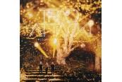 Schallplatte Trad.Attack! - Kullakarva (Shimmer Gold) (Play It Again Sam) im Test, Bild 1