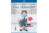 Blu-ray Film Voll Verkatert (Universum) im Test, Bild 1