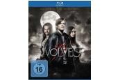 Blu-ray Film Wolves – Die letzten ihrer Art (Universum) im Test, Bild 1